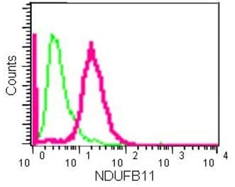 Flow Cytometry - Anti-NDUFB11 antibody [EPR15252] (ab183716)