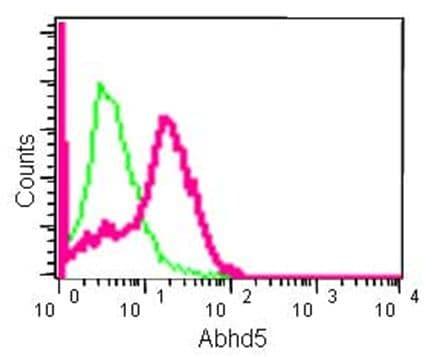 Flow Cytometry (Intracellular) - Anti-Abhd5/CGI-58 antibody [EPR12621] (ab183739)