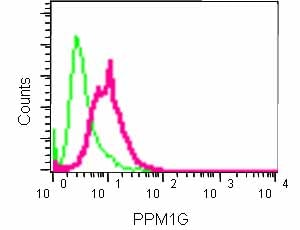 Flow Cytometry (Intracellular) - Anti-PPM1G antibody [EPR13362] (ab184184)