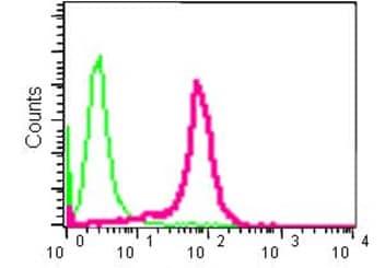 Flow Cytometry (Intracellular) - Anti-AGPS antibody [EPR13120] - N-terminal (ab184186)