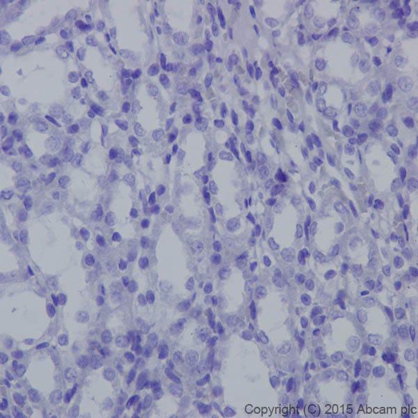 Immunohistochemistry (Formalin/PFA-fixed paraffin-embedded sections) - Anti-Neurofascin antibody [EPR19004] (ab184378)