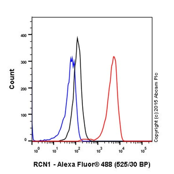 Flow Cytometry - Anti-RCN1/RCN antibody [EPR19193] (ab184441)