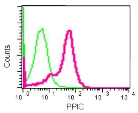 Flow Cytometry - Anti-PPIC antibody [EPR15355] - C-terminal (ab184552)