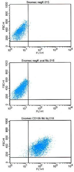 Flow Cytometry - FITC Anti-CD105 antibody [MJ718] (ab184667)