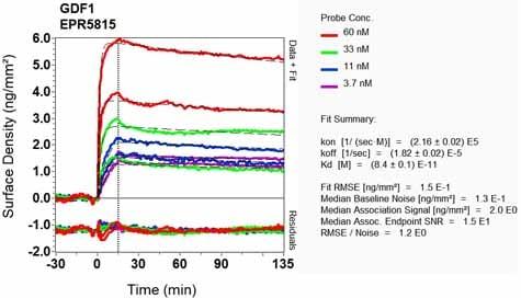 OI-RD Scanning - Anti-GDF1 antibody [EPR5815] - BSA and Azide free (ab184782)