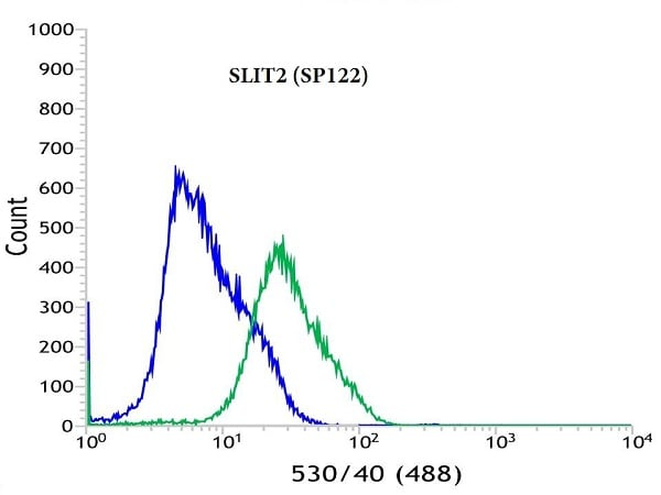 Flow Cytometry - Anti-Slit2 antibody [SP122] (ab184856)