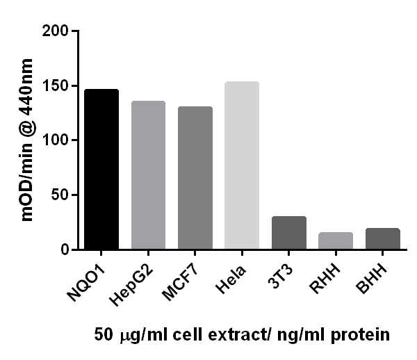 Comparison of NQO1 activity in different samples at 50 ug/mL