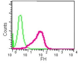 Flow Cytometry - Anti-FH/Fumarase antibody [EPR11647(2)(B)] - N-terminal (ab184945)