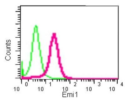 Flow Cytometry - Anti-Emi1 antibody [EPR15320] (ab184950)