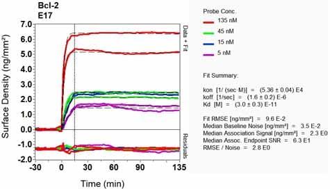 OI-RD Scanning - Anti-Bcl-2 antibody [E17] - BSA and Azide free (ab185002)