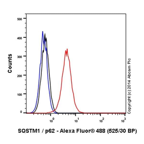Flow Cytometry - Alexa Fluor® 488 Anti-SQSTM1 / p62 antibody [EPR4844] - Autophagosome Marker (ab185015)