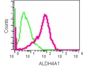 Flow Cytometry - Anti-ALDH4A1/P5CDH antibody [EPR14287] (ab185208)