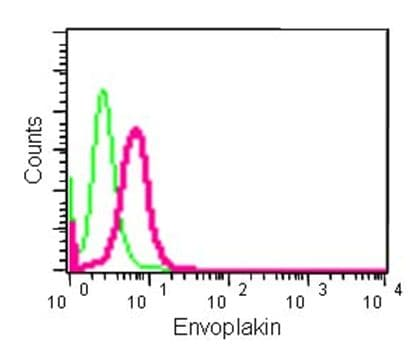 Flow Cytometry - Anti-EVPL antibody [EPR14688] (ab185217)
