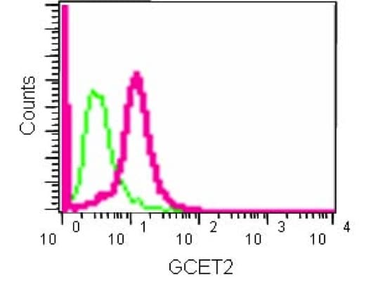 Flow Cytometry - Anti-GCET2 antibody [EPR14333] (ab185231)