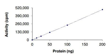 Functional Studies - Recombinant human KSR2 protein (ab185259)