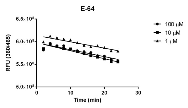 Inhibition of Cathepsin B activity by the Cathepsin B inhibitor E-64
