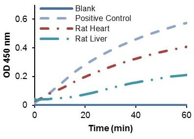 alpha-Ketoglutarate Dehydrogenase activity in various samples