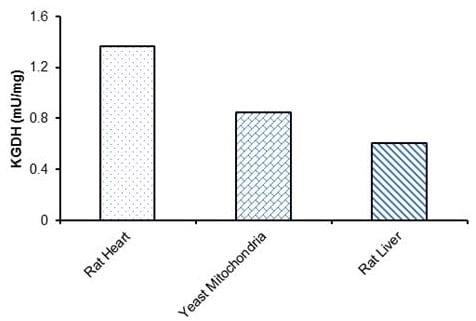 alpha-Ketoglutarate Dehydrogenase specific activity in various samples
