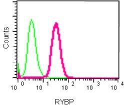 Flow Cytometry - Anti-RYBP antibody [EPR13059(2)] (ab185971)