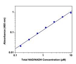 NADH standard curve