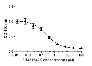 SMAD3 (pS423/S425) phosphorylation in response to SB431542 treatment.