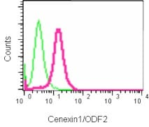 Flow Cytometry - Anti-Cenexin1/ODF2 antibody [EPR13561] (ab186412)