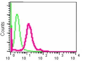 Flow Cytometry - Anti-ALIX antibody [EPR15314] - N-terminal (ab186429)