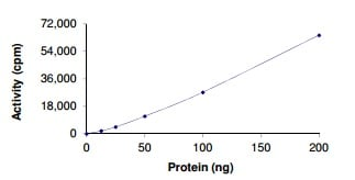 Functional Studies - Recombinant human ALK protein (Active) (ab186458)