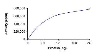 Functional Studies - Recombinant human Ret (mutated G691 S) protein (ab186461)