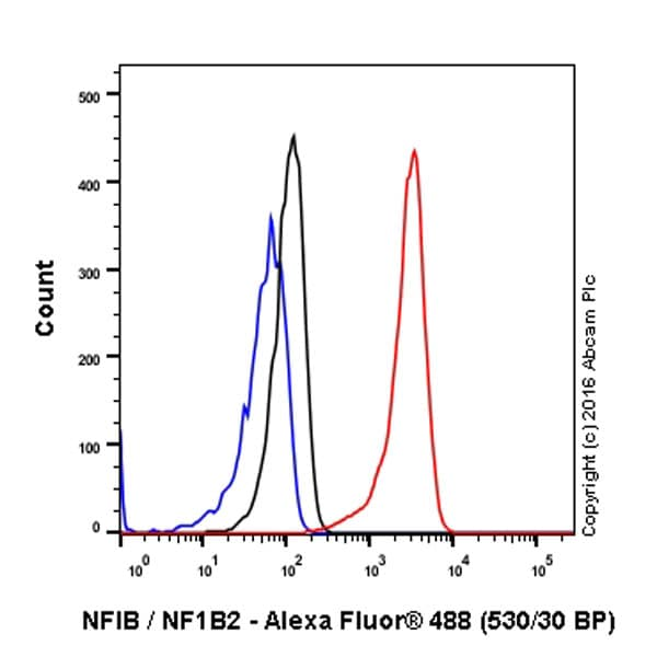 Flow Cytometry - Anti-NFIB / NF1B2 antibody [EPR14122] (ab186738)
