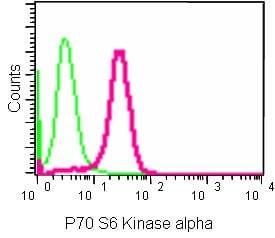 Flow Cytometry (Intracellular) - Anti-S6K1 antibody [EPR13429] (ab186753)