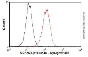 Flow Cytometry - Anti-CDKN2A/p16INK4a antibody [EPR1473] - BSA and Azide free (ab186932)