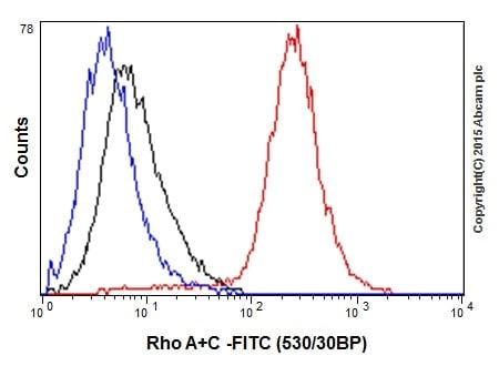 Flow Cytometry - Anti-RhoA + RhoC antibody [EPR18133] (ab187026)
