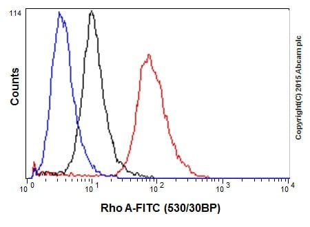 Flow Cytometry - Anti-RhoA antibody [EPR18134] (ab187027)