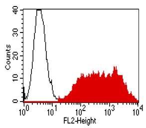 Flow Cytometry - Anti-Claudin 9 antibody [YD4E9] (ab187116)