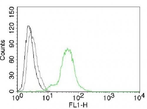 Flow Cytometry - Anti-Estrogen Receptor beta 1 antibody [ERb455] - C-terminal (ab187291)