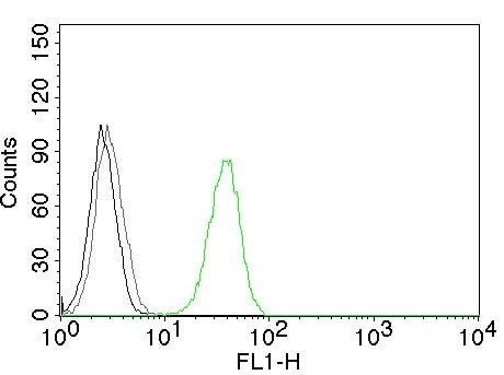Flow Cytometry - Anti-CD31 antibody [C31.3] (ab187377)
