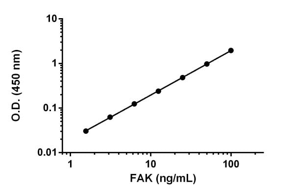 Example of FAK standard curve.