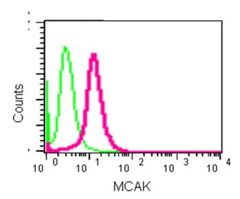 Flow Cytometry - Anti-MCAK antibody [EPR14838] (ab187652)