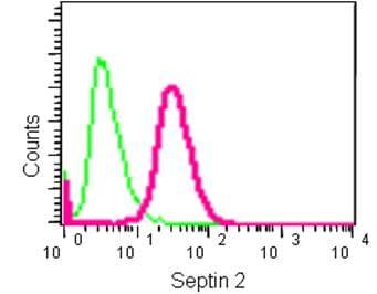 Flow Cytometry - Anti-Septin 2 antibody [EPR12122] (ab187654)