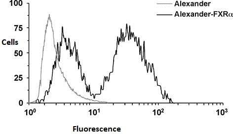 Flow Cytometry - Anti-Bile Acid Receptor NR1H4 antibody [322.1.2.2] - N-terminal (ab187735)