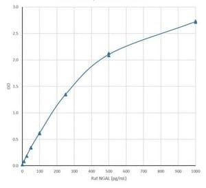 ELISA - Recombinant Rat Lipocalin-2 / NGAL protein (ab188053)