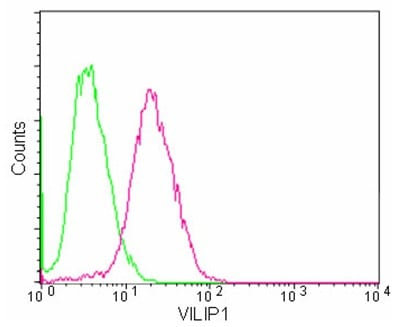 Flow Cytometry - Anti-VILIP1 antibody [EPR9832] - BSA and Azide free (ab188105)