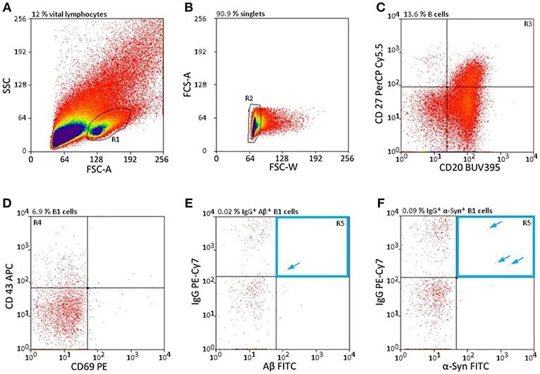 Flow Cytometry - FITC Conjugation Kit (Fast)- Lightning-Link® (ab188285)