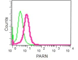 Flow Cytometry - Anti-PARN antibody [EPR11670(2)] (ab188333)