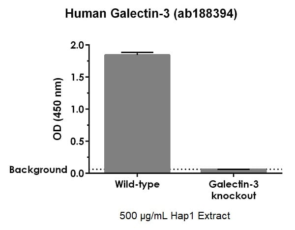 ab188394 specifically detects galectin-3 in human HAP1 cells.