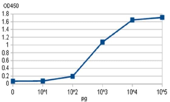ELISA - Anti-Bordetella pertussis toxin/ptxD antibody (ab188414)