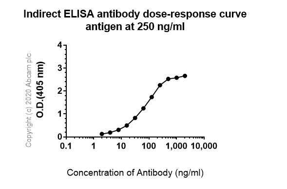 ELISA - Anti-Pan Trk antibody [EP1058Y] - BSA and Azide free (ab188825)