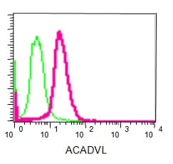 Flow Cytometry - Anti-ACADVL/VLCAD antibody [EPR15107(B)] (ab188872)