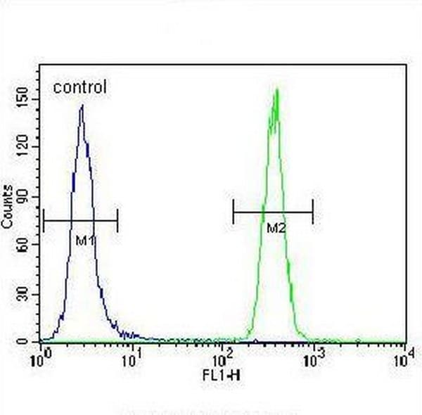 Flow Cytometry - Anti-GRP78 BiP antibody (ab188878)